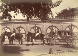 Stables [Rampur] 32